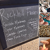 Rockhill Farms